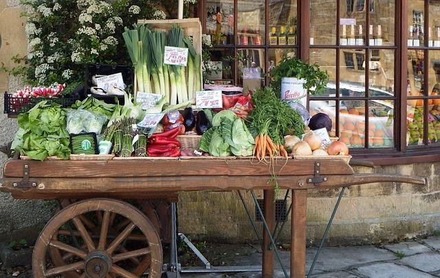 7 Tips to Make Life Easier In the Organic Garden