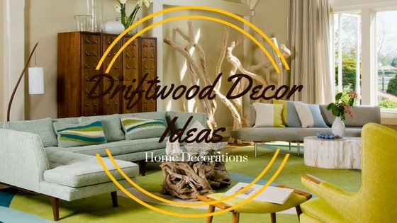 Driftwood Decor Ideas
