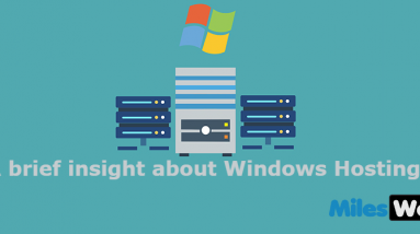 buy windows web hosting