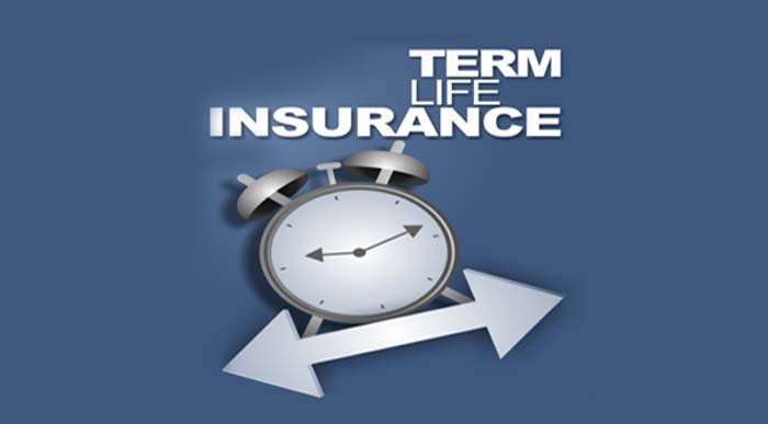 How To Buy Best Term Insurance Plan?