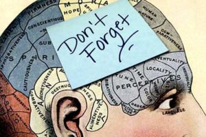 How to Protect Memory and Cognition