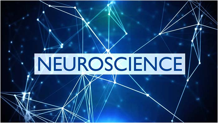 Know About Neuroscience And Why It Is Important?
