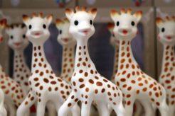Image result for sophie giraffe