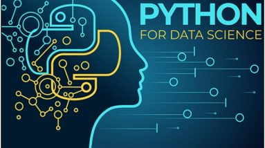 Choose Python for Your Data Science Projects