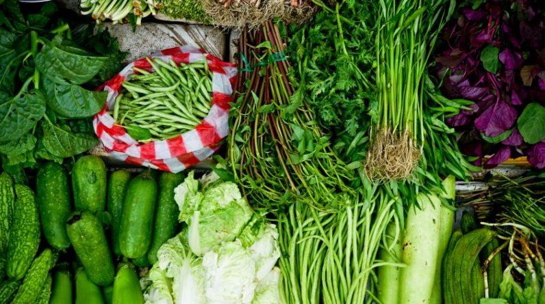 Vegetable Seeds Last